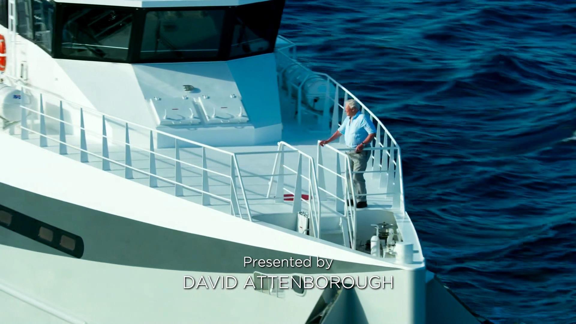 الكوكب الأزرق - الموسم الثاني  BBC Blue Planet II - ح1 - محيط واحد - تحميل تورنت 3 arabp2p.com